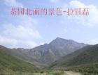 美食+烧烤+美景到福秀山庄