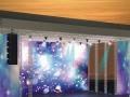 专业生产婚庆演出用舞台,灯光架,17年大品牌