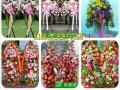 开业花篮预定绿植配送鲜花速递婚礼会议花艺活动鲜花店