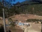 转让巨甸镇 路西村 岩乐水库 旁药材基地280平米