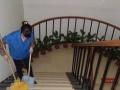 家庭保洁 新居开荒 企事单位的开荒保洁