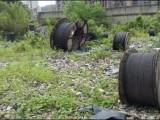 求购185电缆线 收购苏州旧电缆线 昆山花桥电线电缆回收