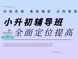 上海奉贤中小学补习,高中化学辅导,高中语文培训哪家好