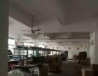 万江莫屋三楼450平米出租 带精装修办公室