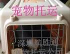 惠州宠物托运,宠物跟人随机托运,宠物空运
