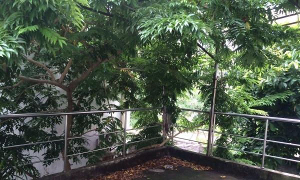 美兰海甸白沙门单间每层四个别墅中的中单间业为什么在重庆买别墅胡歌图片