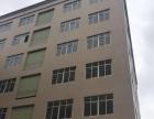 出租古镇大信3楼 2000方全新厂房 有院子停车场