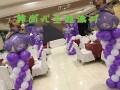 主题生日宴会场地布置,宝宝生日纪念气球派对布置
