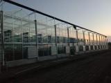 玻璃溫室 連棟溫室 專業維修溫室大棚 種植遮陽