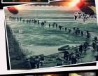 7月特惠138元/人渔家傲滩涂赶海 水枪大战 乐享海鲜餐