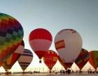 出租异形熊猫热气球,一手资源价格优惠