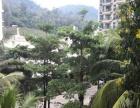 三亚 汇丰国际 精装两房 景观好 价格少 年租短租 拎包入住