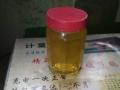 杨氏养蜂场出售纯蜂蜜