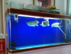 9成新鱼缸价格1000