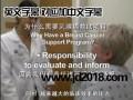 专业视频加字幕文字影视剧教学讲座节目视频加字幕SRT字幕制作