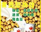 凉山多功能现磨豆浆机 进口九阳无渣商用豆浆机价格