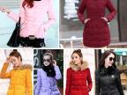 厂家直销女式棉衣 韩版时尚修身羽绒棉服 女外贸原单女装棉衣外套