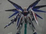 供应万代日本玩具高达模型 HGUC 限定
