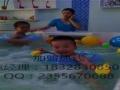 爱多多婴幼儿游泳馆加盟加盟 娱乐场所