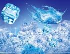 幸福夏天食用冰专业销售奶茶 冷饮 酒吧 咖啡厅 餐饮适用