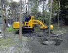 租赁挖树机!园林挖树机出租!挖树队专用起树机 3分钟高效挖树
