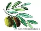 深圳保洁钟点工费用 深圳圣洁保洁工程服务有限公司
