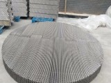 125Y/250Y/350Y/450Y不锈钢孔板波纹填料