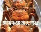 清水洪泽湖大闸蟹