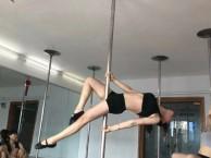 武侯区舞蹈培训 爵士舞 钢管舞 现代舞 流行舞绸缎吊环