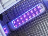 美甲LED光疗机9Wled灯管9W美甲灯led电子灯条UV光疗机