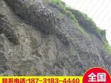 落石防护网 中国领先落石防护网 落石防护网厂家