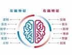 忆发图强全脑潜能教育加盟/教育培训/快速获利