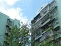 吉大白莲新村,租价低,空气清新。依山而建,坐享天然之气。。。