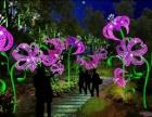 4D科技创意灯光节出租有望在2018年上市