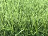 生产定制足球场人造草坪 幼儿园人工草坪