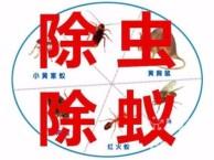 唐山路南杀虫灭鼠,唐山灭蚂蚁公司,蚂蚁怎么消灭