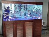魚缸定做 批發 維修 搬家 清洗