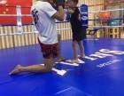 天通苑京妮儿童汇 搏击散打格斗术摔跤防身术培训 合胜道运动馆