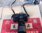 日本理光相机