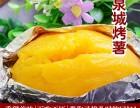 小薯甜甜低温不是寒冷是烤薯生意的催化剂