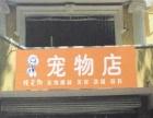 精靈狗寵物店開業優惠活動