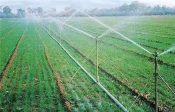 石家庄厂家批发大田可移动喷灌支架喷头农田节水设备金属材质