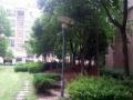 锦绣龙城旁当代安普顿小镇精装2房随时看房环境优美