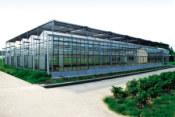 山东智能温室造价|供应智能温室