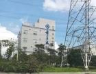 杜阮子绵旁钢结构厂房10000平方可分租