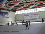运动健身项目 仿真滑冰板 移动滑冰场 火爆2017