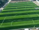 重庆九龙坡足球场人造草坪施工 运动场塑胶草坪铺设