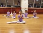 北京月坛北桥附近 少儿舞蹈芭蕾舞教学