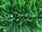 孟鑫人造草坪仿真草坪地毯人工 假草皮加密室内阳台户外幼儿园