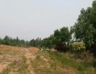 高铁站 太肥一级路边 土地 10000平米